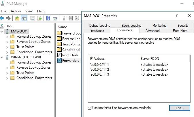 Add DNS Forwarder