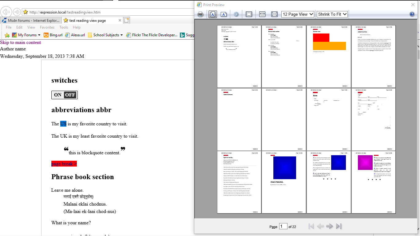 Screenshot Of Large Document24 Pages In IEs Print Preview