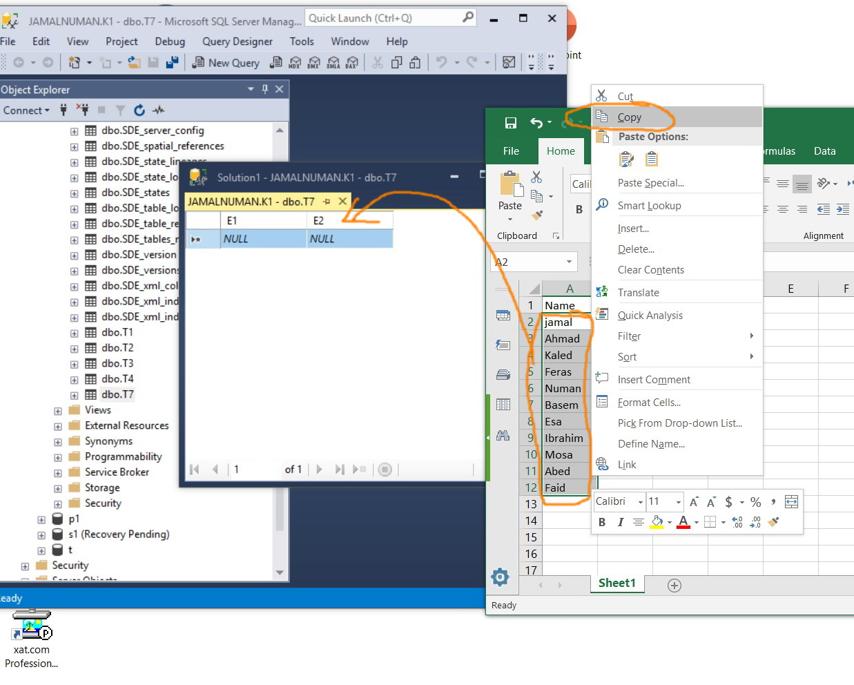 How to copy\paste multiple records of a field from Excel to