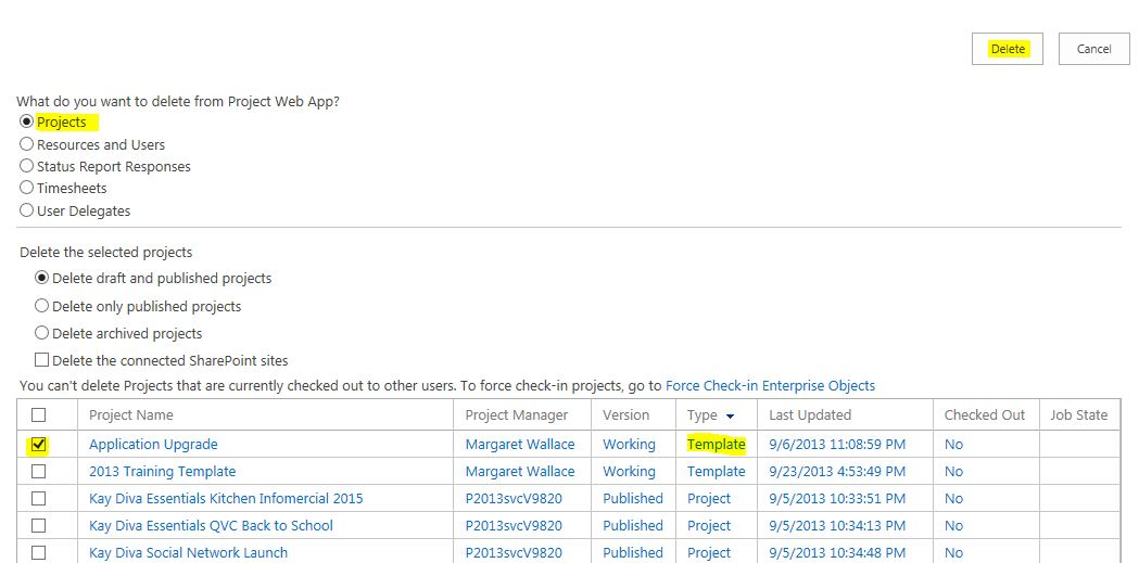 Project Plan Template - How to Delete