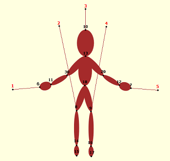 Limbs and nodes of prototype marionette