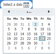 datepicker shows truncated month